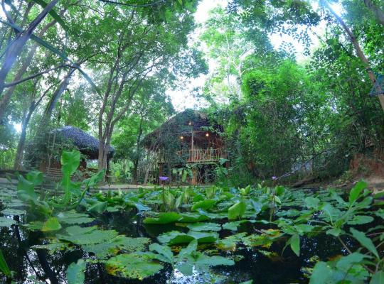 Hotel fotografií: Mutu Village