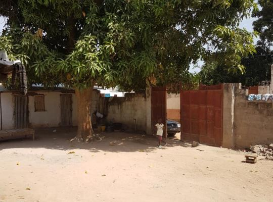 Фотографії готелю: Sowe Kunda Homestay