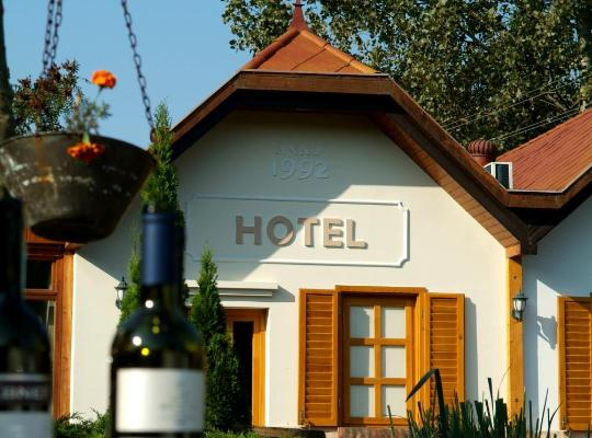 ホテルの写真: Hotel Vineyard Inn
