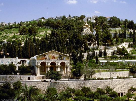 Ảnh khách sạn: Jerusalem Panorama Hotel