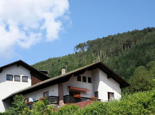 Hotel photos: Ferienwohnungen Schwarzwald Panorama