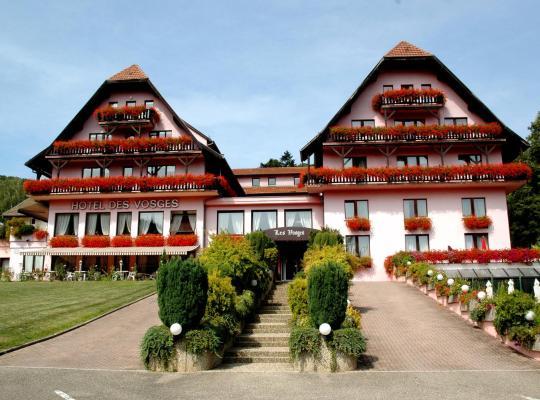 酒店照片: Hôtel Restaurant Des Vosges