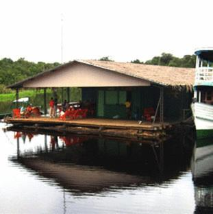 Zdjęcia obiektu: Manaus Jungle Hostel