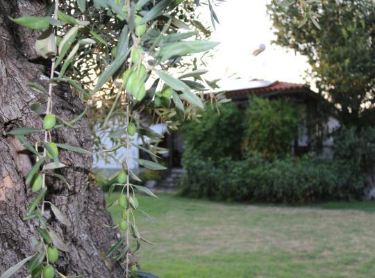 Фотографии гостиницы: Patroudis House