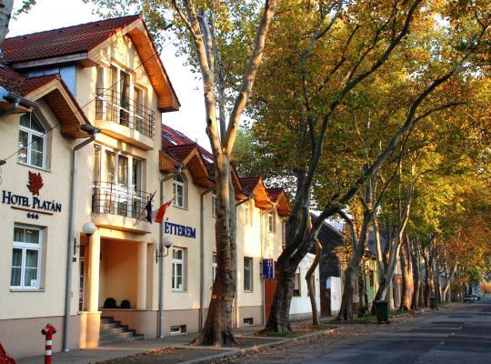 Фотографии гостиницы: Hotel Platan