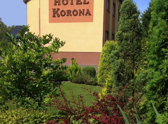ホテルの写真: Hotelik Korona