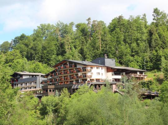 Hotel photos: Ringhotel Mönch`s Waldhotel