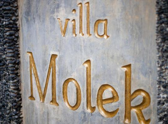 Хотел снимки: Villa Molek