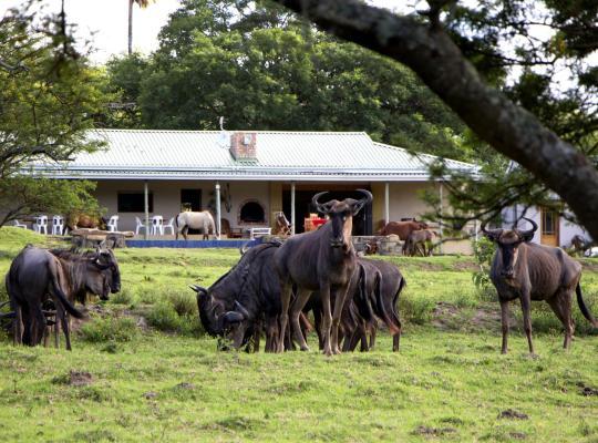 酒店照片: Santa Paloma Guest Farm