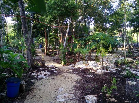 Hotel bilder: Quintana Roo National Park Campground & Hiking