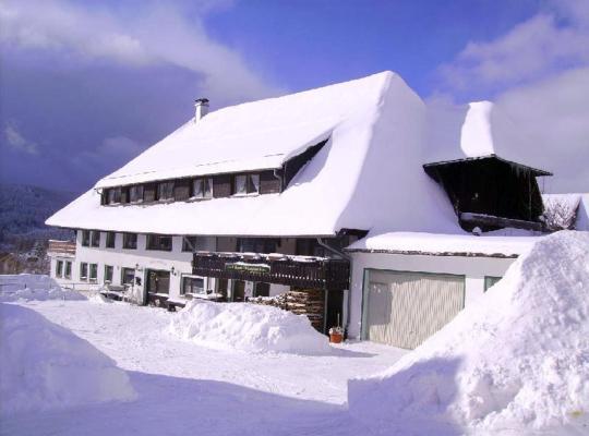 ホテルの写真: Pension Wiesengrund