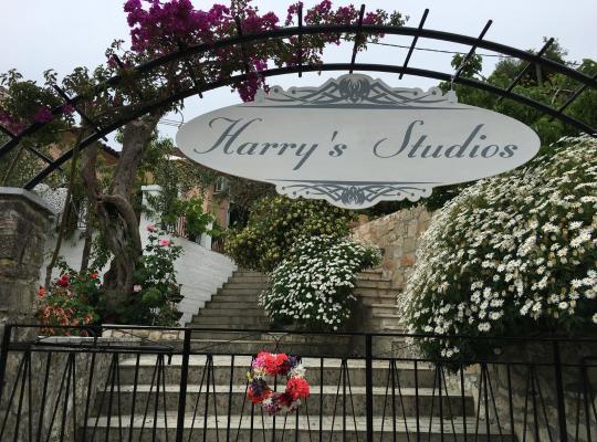 Foto dell'hotel: Harry's Studios