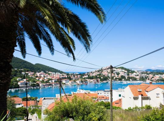 Hotel photos: Apartments Dubrovnik Palm Tree Paradise