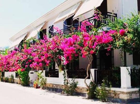 호텔 사진: Hotel Angeliki