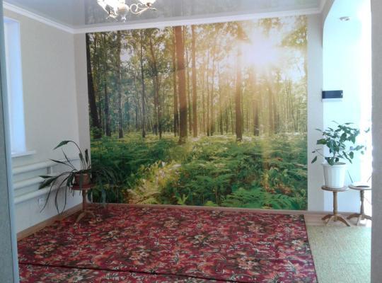 Fotos do Hotel: Guest house Semeynyi