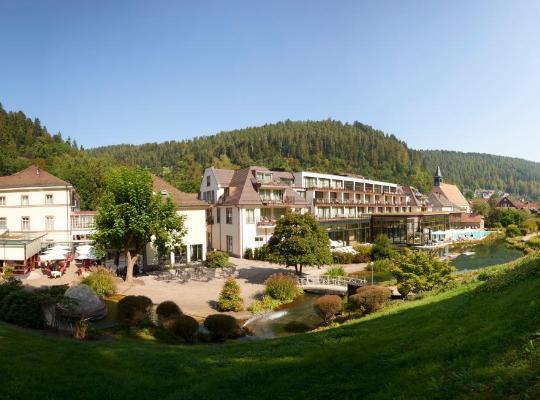 Hotel photos: Hotel Therme Bad Teinach