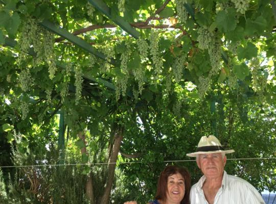 Ảnh khách sạn: Patmos Villas