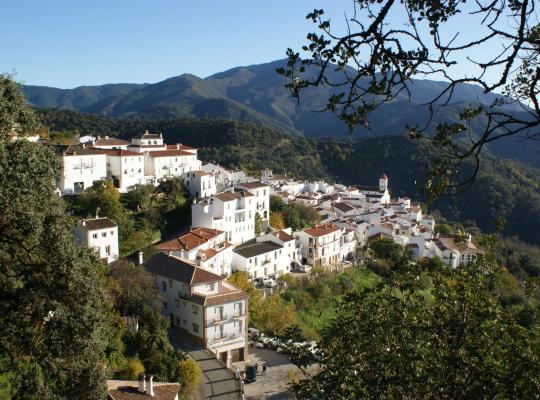 Хотел снимки: Apartamentos Rurales Jardines del Visir