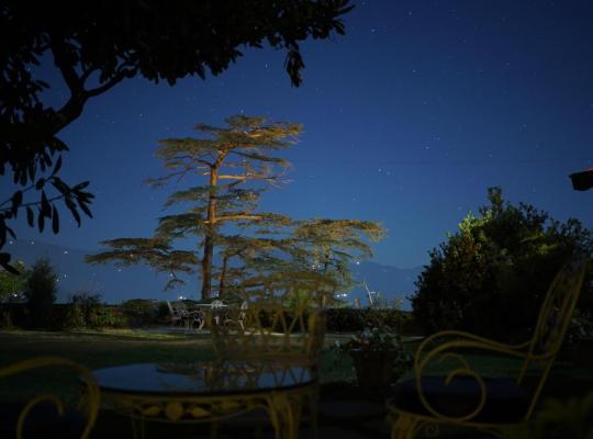 Hotel Valokuvat: Springfields Shimla