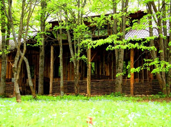 Загородный отель Дом Рыбака Трусово