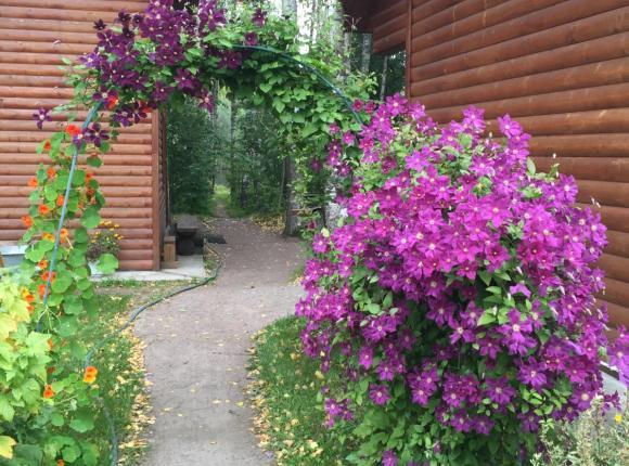 Дом для отпуска Банька у Ивана, Гостилицы