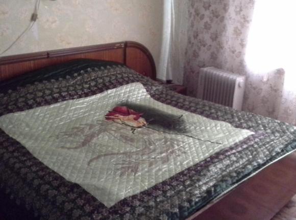 Гостевой дом На Молодежной 10, Плесецк