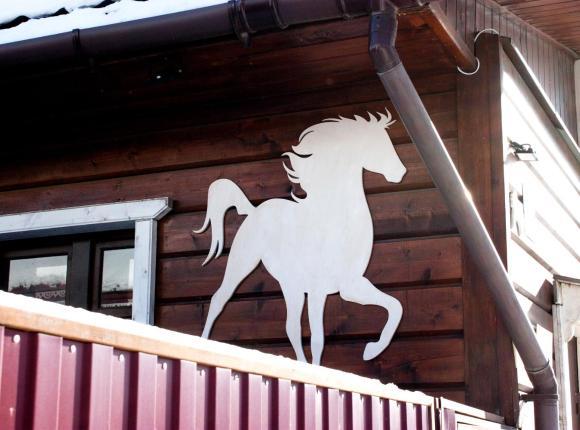 Гостевой дом Белая Лошадь, Кострома