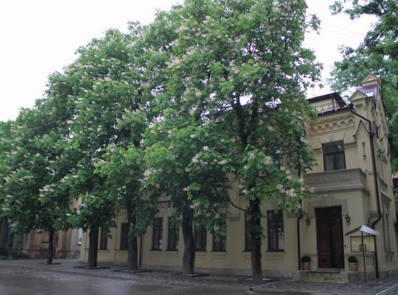 Санаторий Княжна Мери, Железноводск