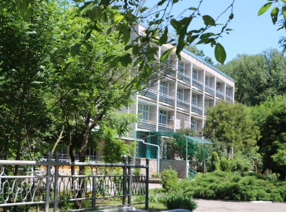Energetik Hotel, Невинномысск