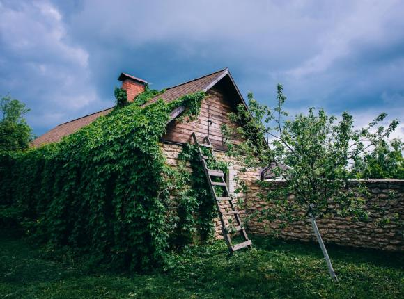 Гостевые Дома Мальвы, Донское 1-е