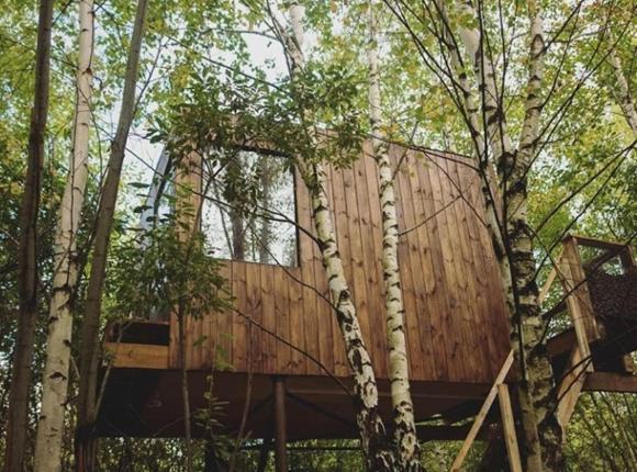 Кемпинг Домик на дереве, Переславль-Залесский