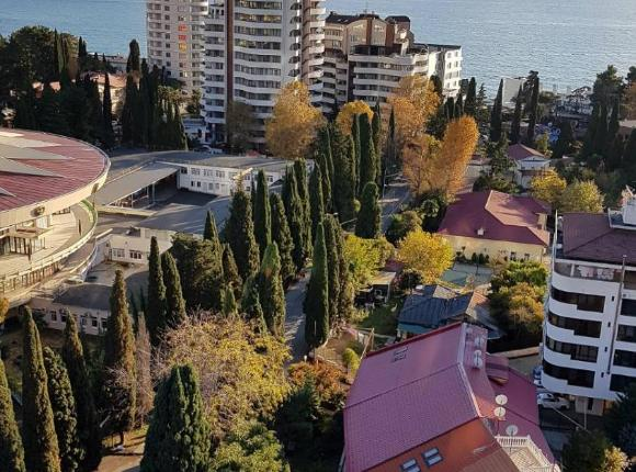 Кипарис, Сочи