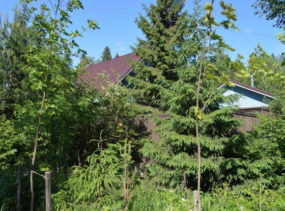 Гостевой дом У четырех озер, Ильичево