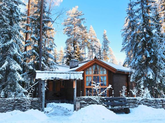 Дом для отпуска Шишки на Лампушке - Русская Деревня, Раздолье
