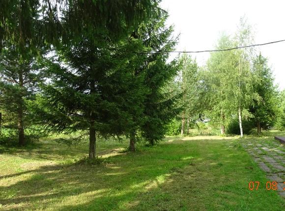 Загородный дом У Разлива, Вологда