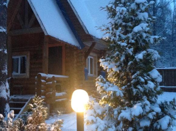 Вилла Лесной дом с баней, Приморск