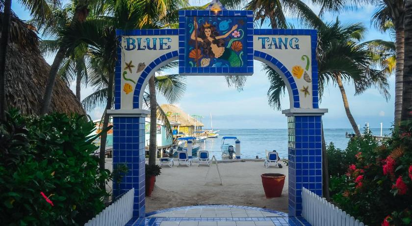 More about Blue Tang Inn