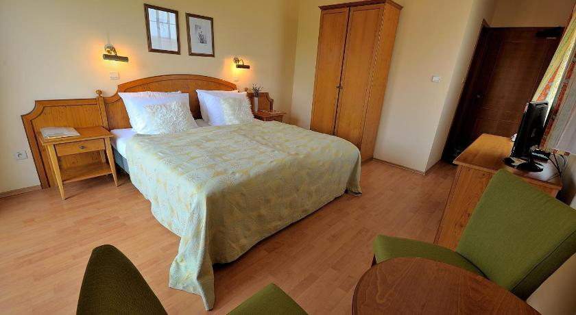 Double Room Penzion Tematin
