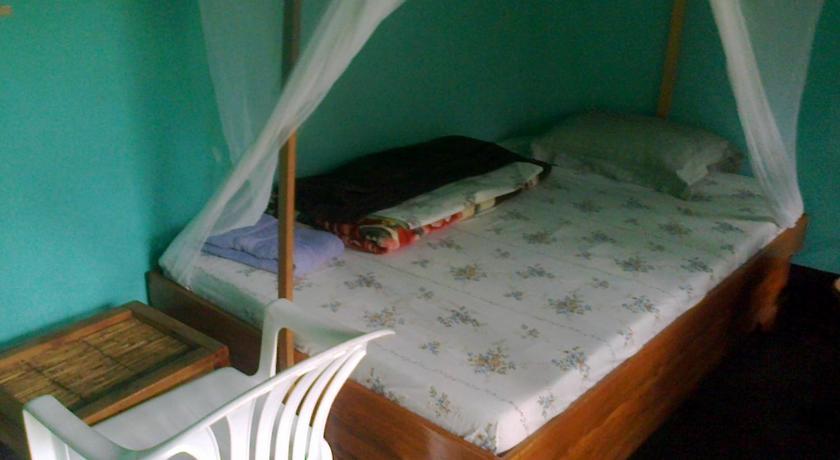 Best time to travel Uganda Rwenzori turaco camp