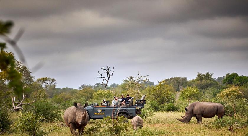 Motswari Private Game Reserve