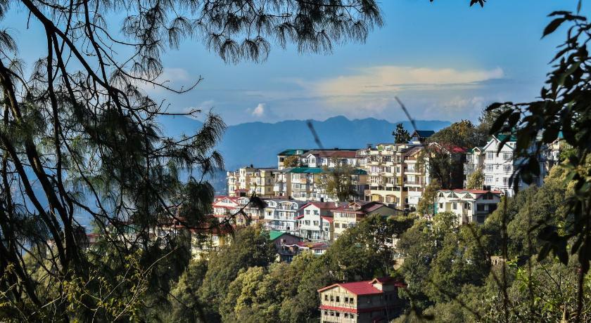 Dhanlaxmi Apartments Prices, photos, reviews, address  India