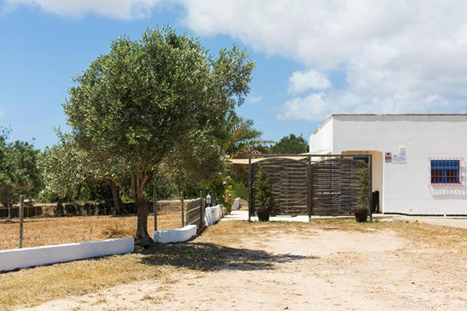 Best time to travel Formentera Ca Na Maria Taueta