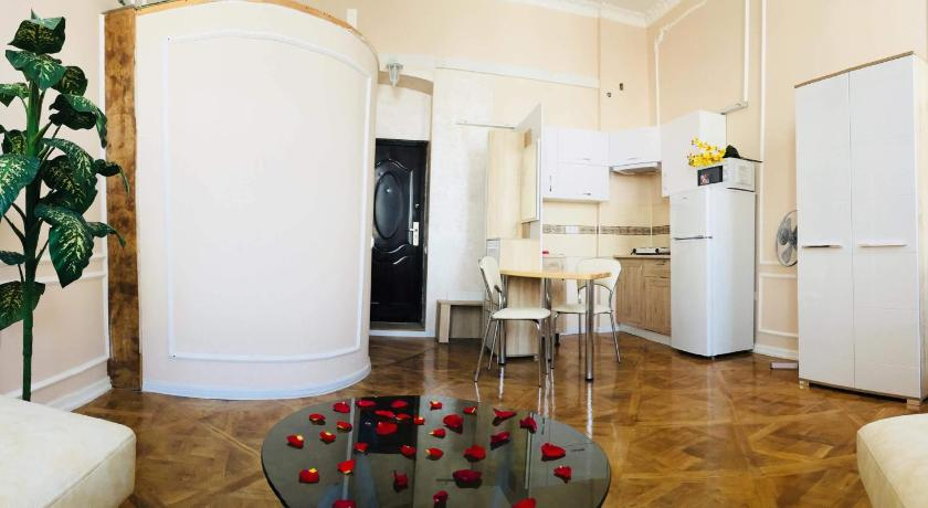 Apartment in the city center