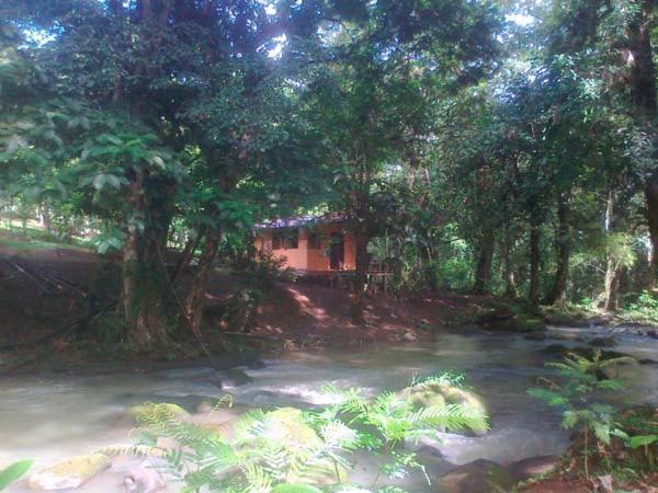 Best time to travel California Vanilla Jungle Lodge