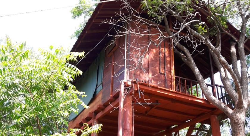 Dambulla Tree House In Sigiriya Room Deals Photos Reviews