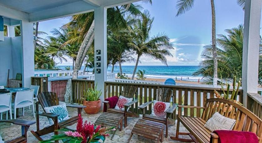 Best time to travel Puerto Rico Blue Nest