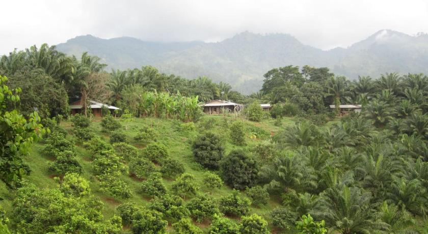 Best time to travel Honduras on the farm - country side lodge