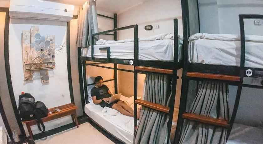 Bunk Bed in Male Dormitory Room  Hive Hostel