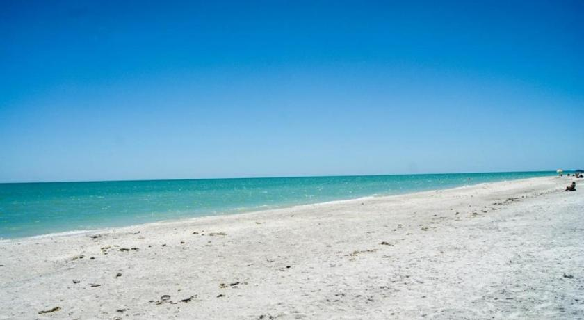 Shell Island Beach Club 6a Entire