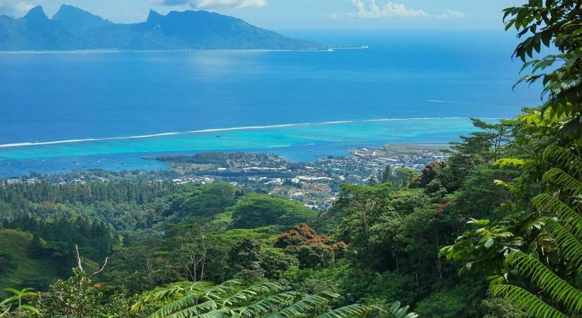 Site- ul gratuit de dating in Polinezia Franceza